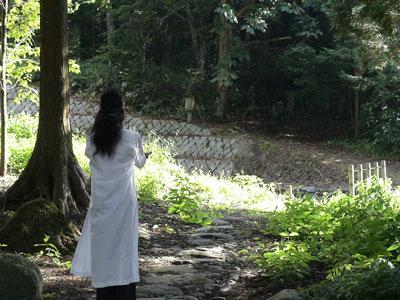 早地峯神社