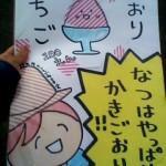 120710_1608~001.jpg